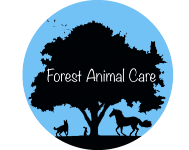 Forest Animal Care